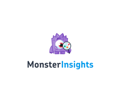 monster-insights