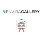 Envira Gallery Slideshow