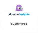 MonsterInsights eCommerce