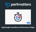 Perfmatters – Lightweight WordPress Performance Plugin