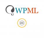 WPML Gravity Forms Multilingual